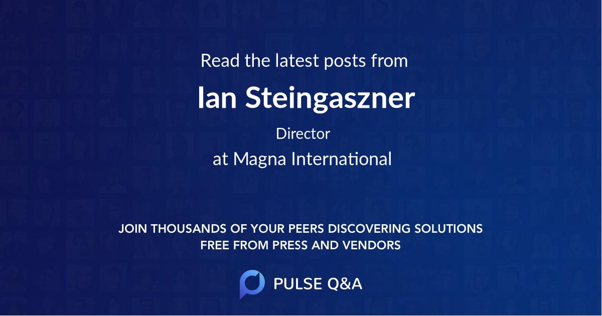 Ian Steingaszner