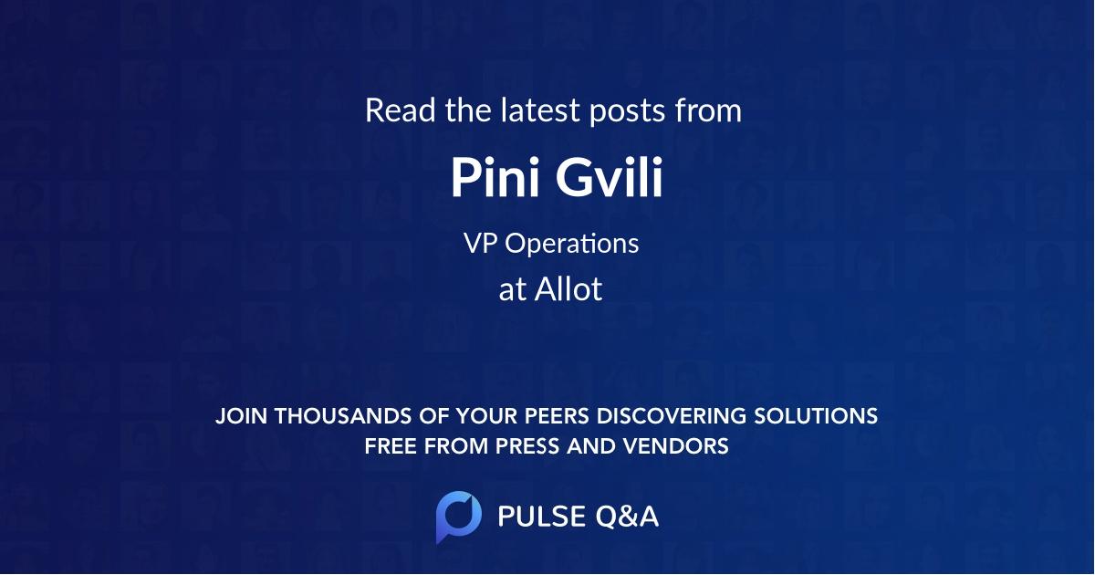 Pini Gvili