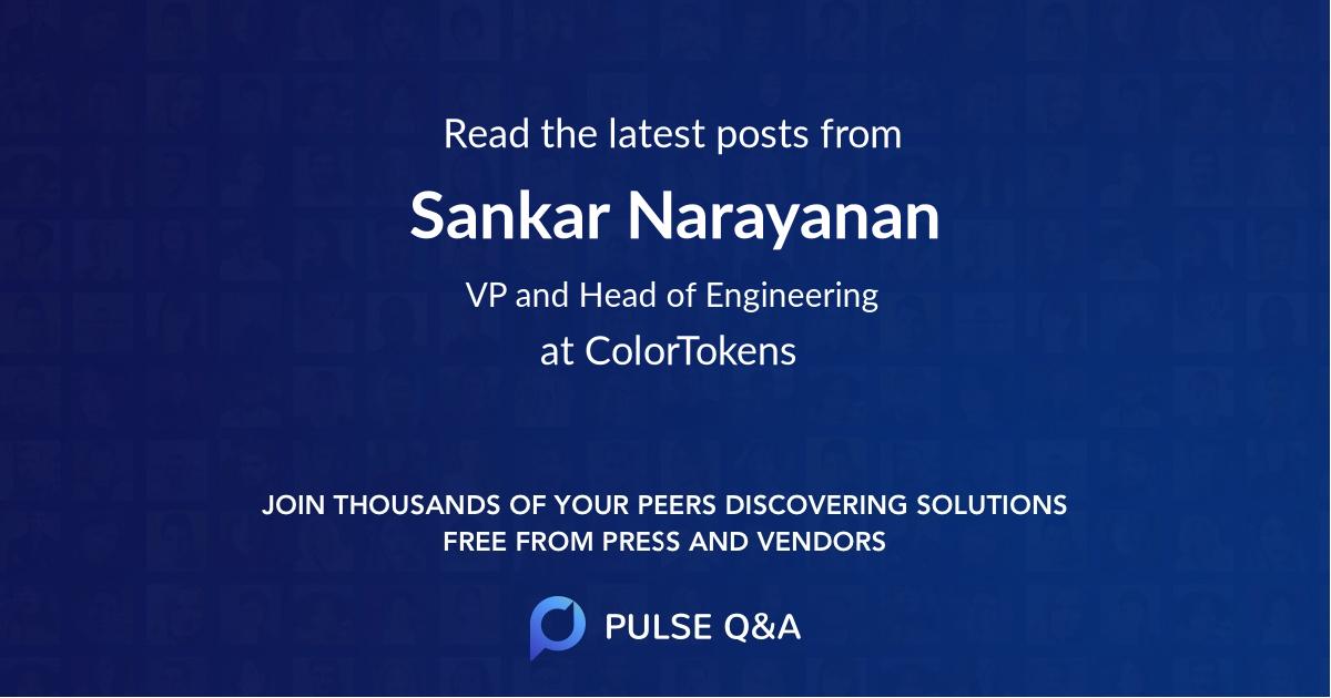 Sankar Narayanan